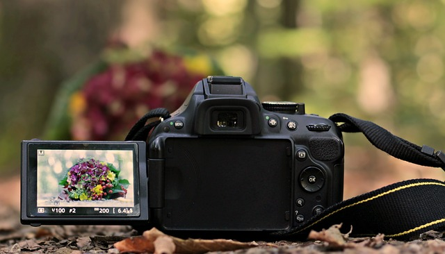 Come scegliere una reflex per fare video?