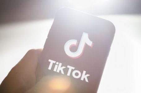 TikTok, la storia tra successo e preoccupazione nazionale